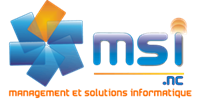 logo_Msi_nc-SensLargeur-transp_100